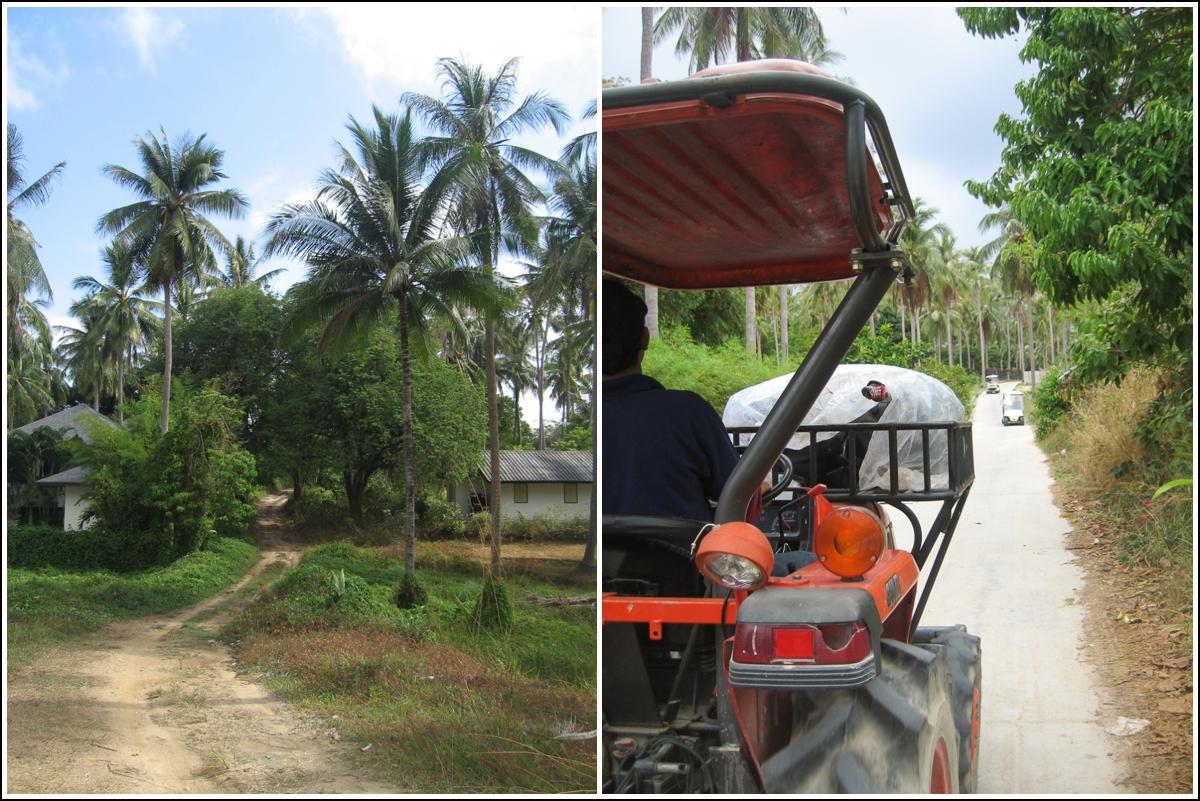 Raya-Island-Thailand4