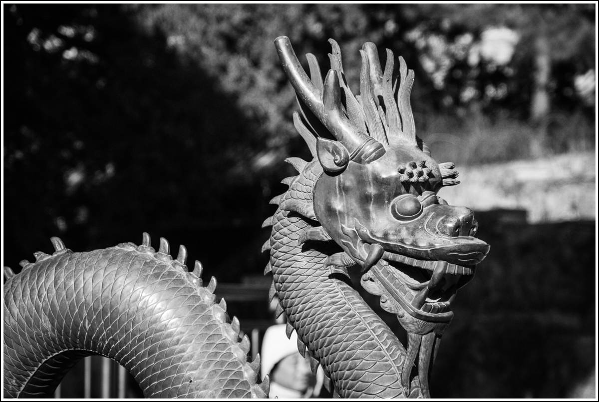 dragon-beijing