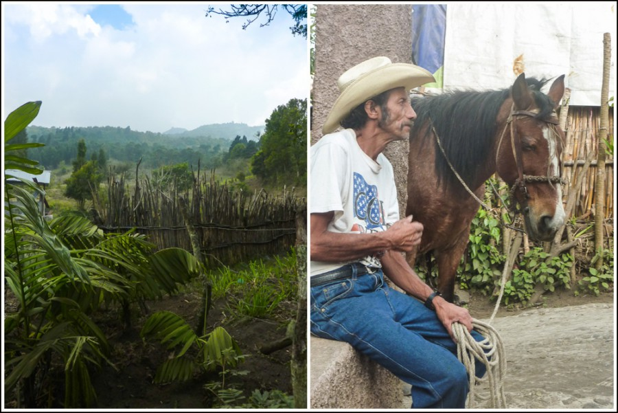 pacaya-vulkan-guatemala7