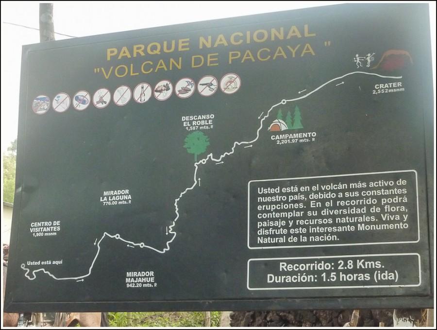 pacaya-vulkan-guatemala4