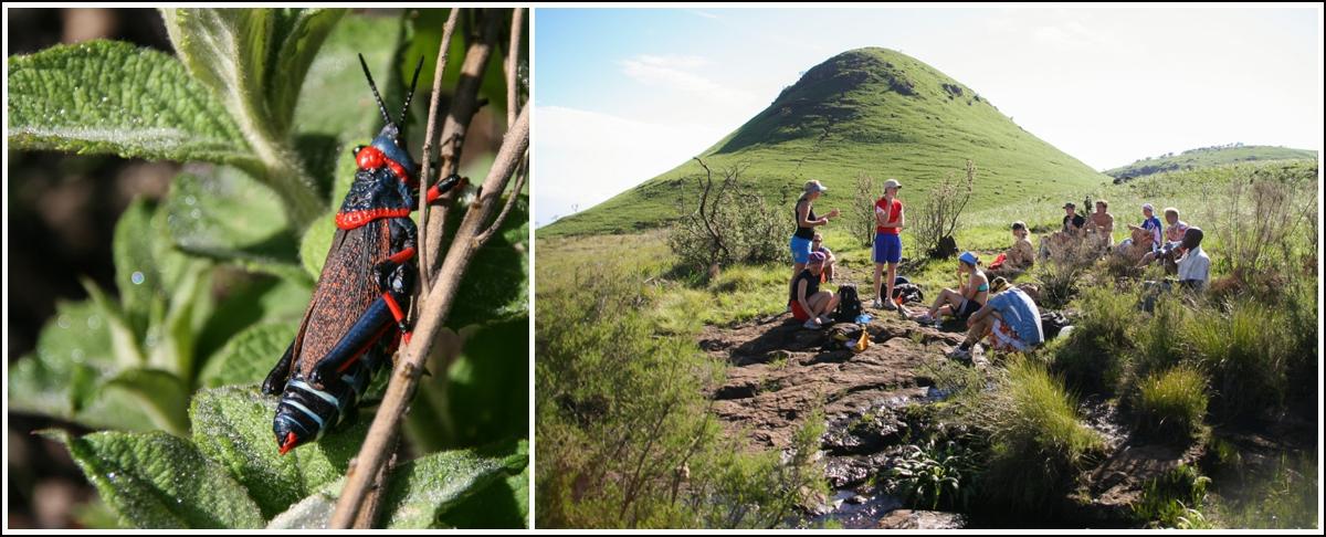 Drakensberg-fottur-Sør-Afrika6