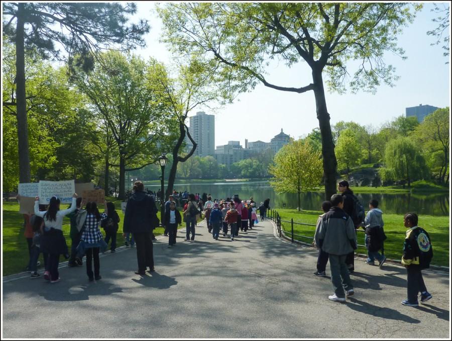 New-york-central-park6