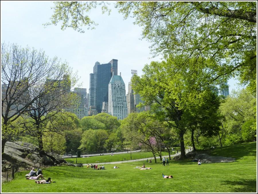 New-york-central-park3