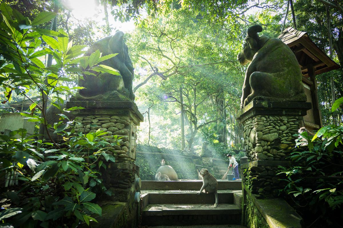 ubud-bali-indonesia-reise-planlegging