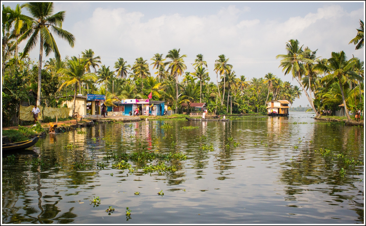backwaters-husbåt-kerala11