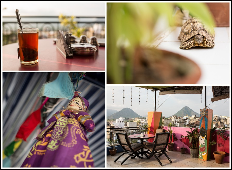 Pushkar-hotel-Everest1