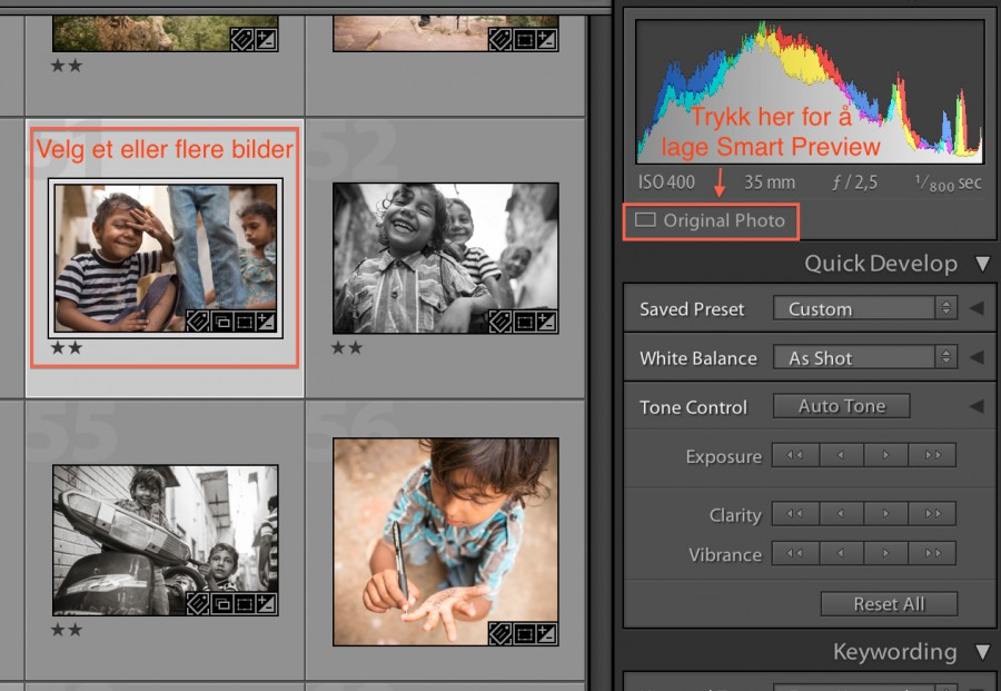 smart-previews-lightroom