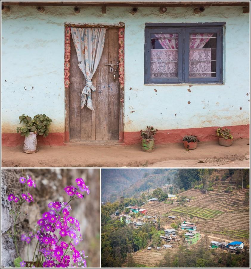 Ilam-Nepal-house