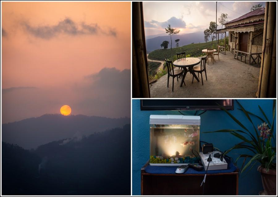 Ilam-Nepal-ChiyaBari-Cottage
