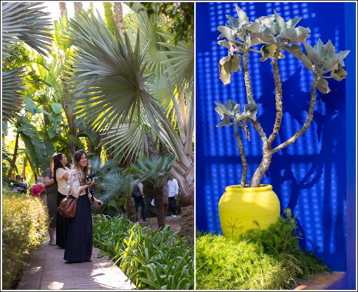 2014-04-18_0006marrakech-jardin-majorelle3