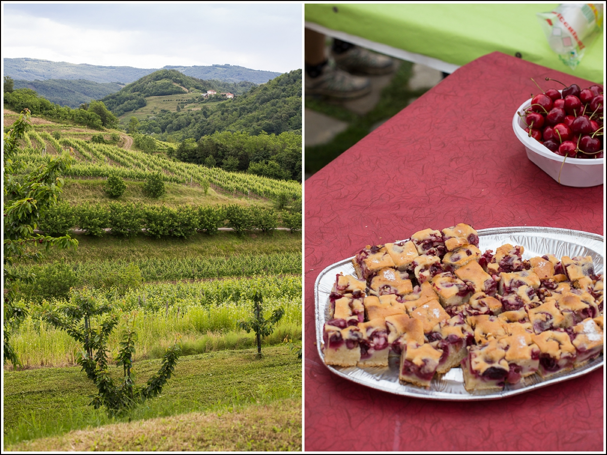 Brda-Slovenia-cherry-pie