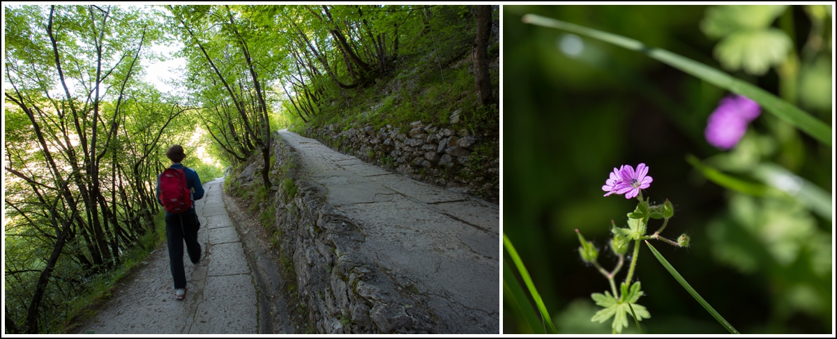 Plitvice-Croatia-path