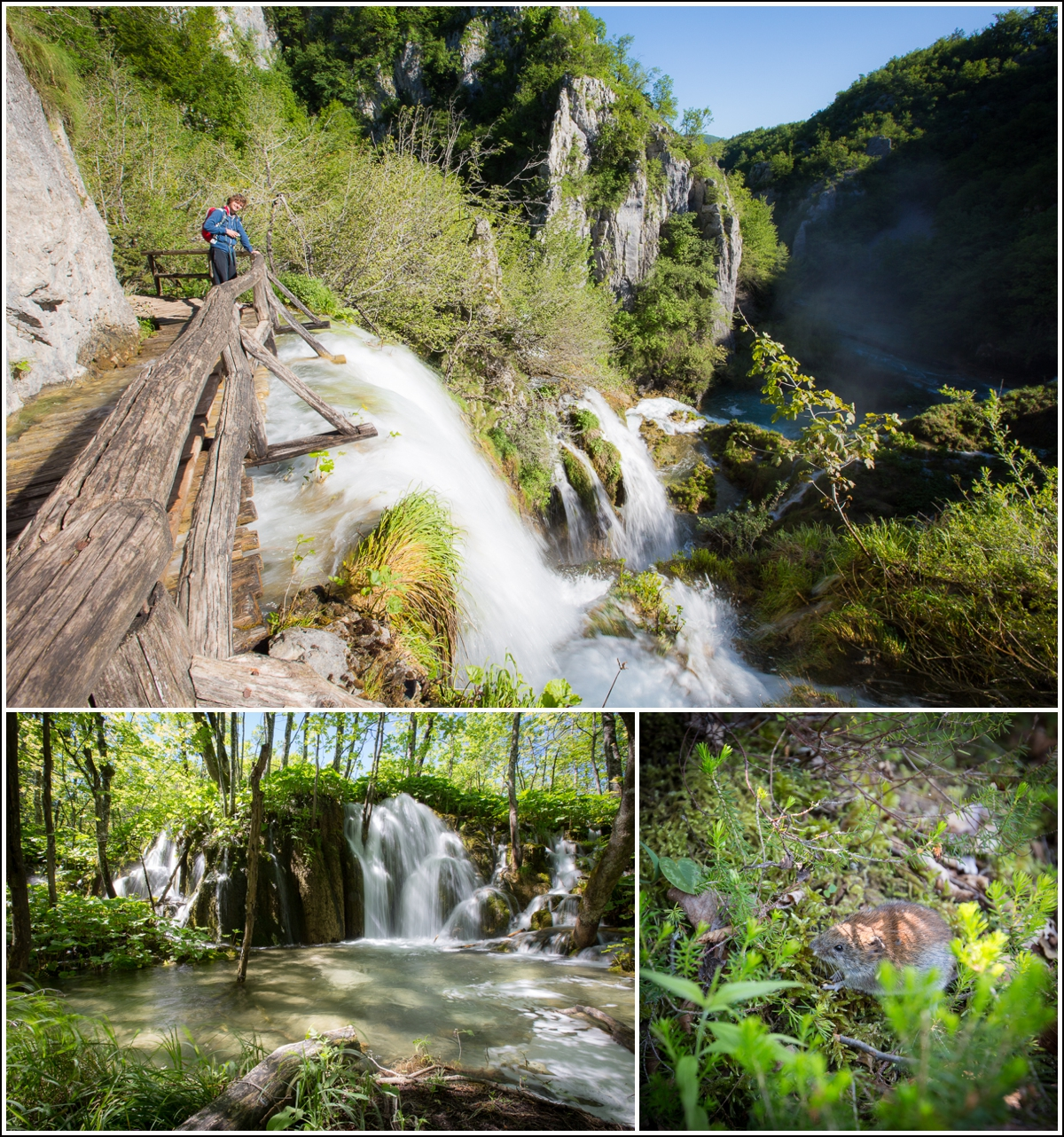Plitvice-Croatia-waterfalls2