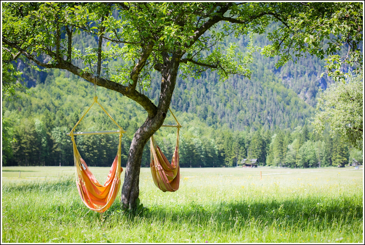 Logar-Valley-swings