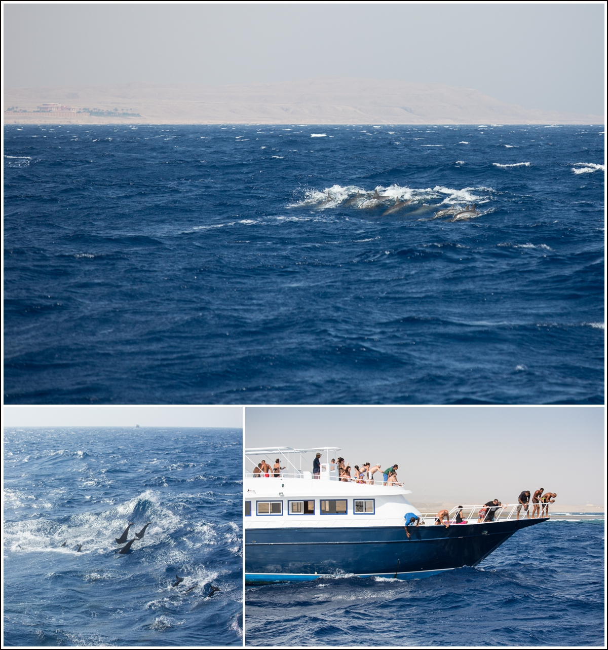 Red-Sea-Egypt-dykking-snorkling3