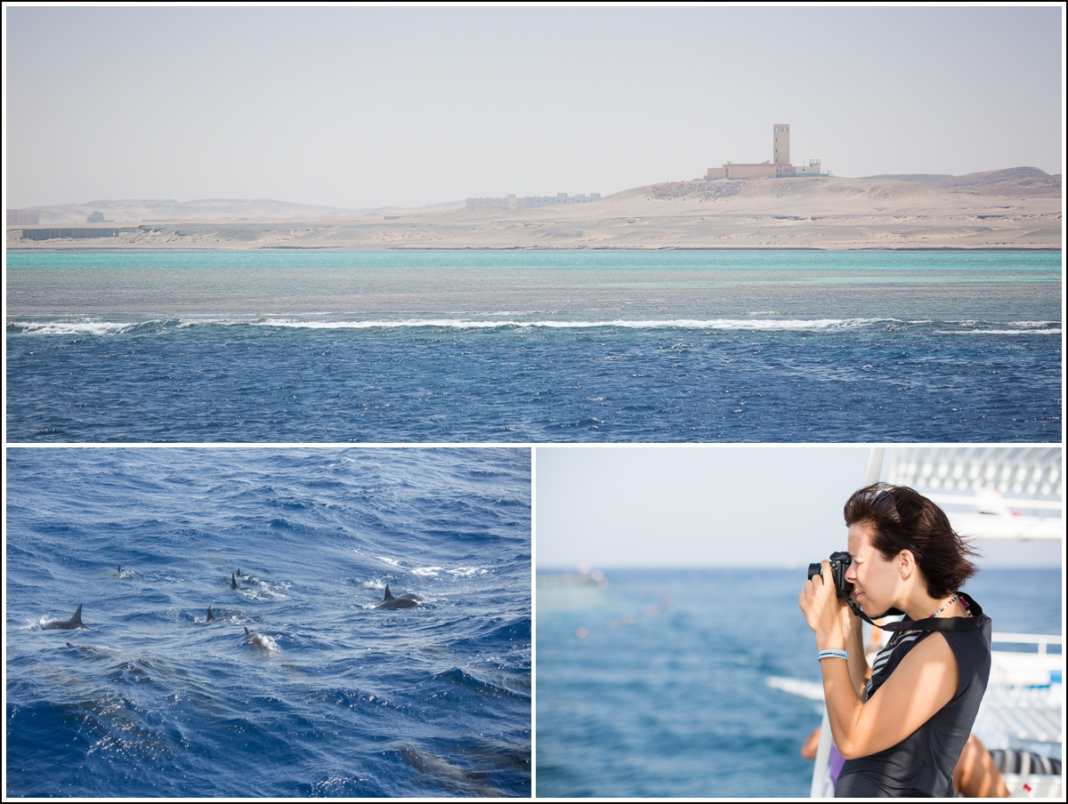 Red-Sea-Egypt-dykking-snorkling6