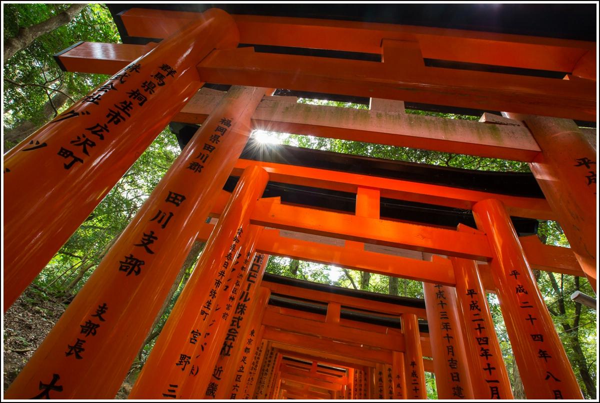 Fushimi-inari-Japan-røde-porter10