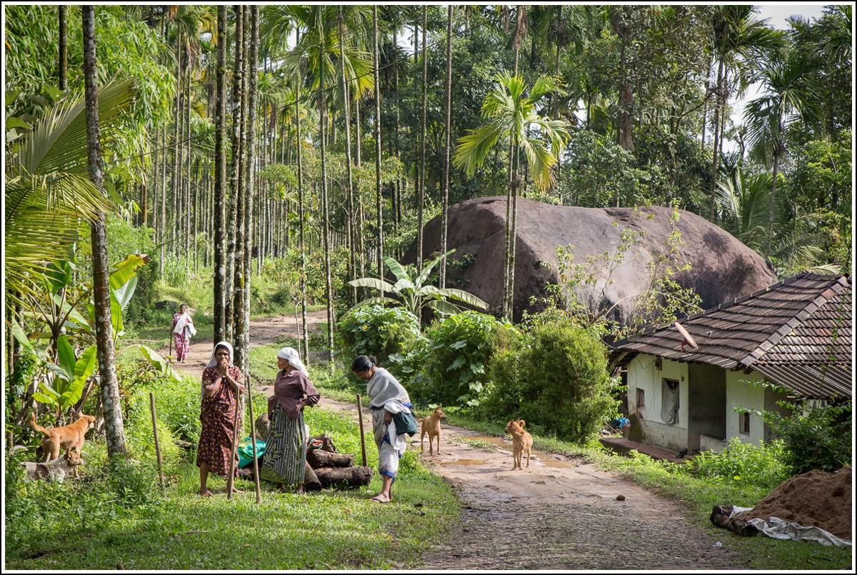 bamboo-village-india5