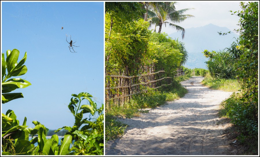 Gili-Air-Indonesia-roads