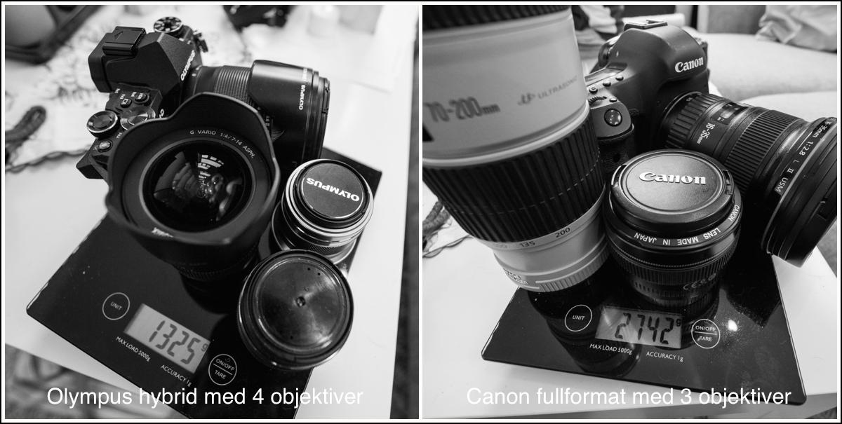 canon-vs-olympus-vekt