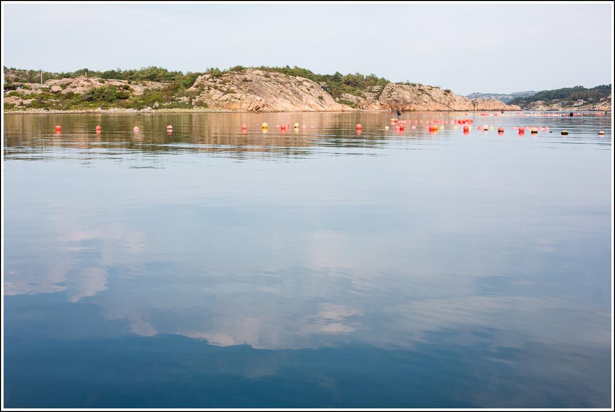 Lysekil-hav