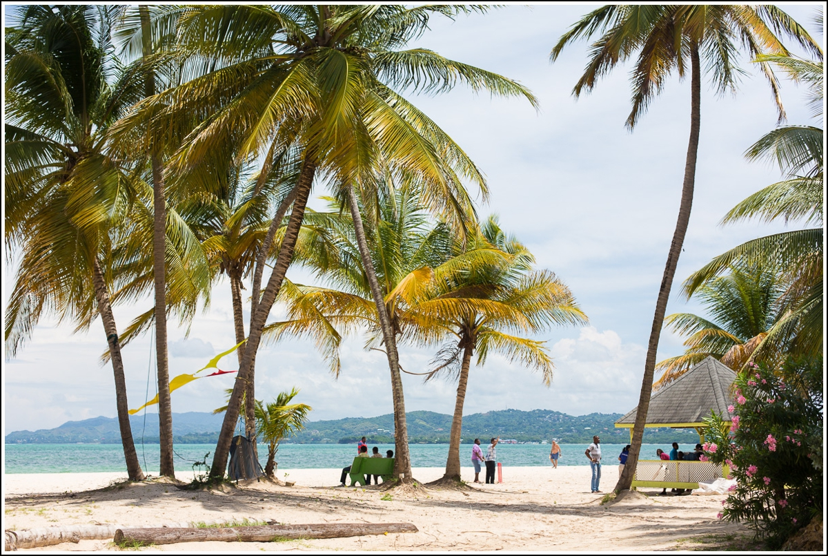 palm-beach-pigeon-point-tobago