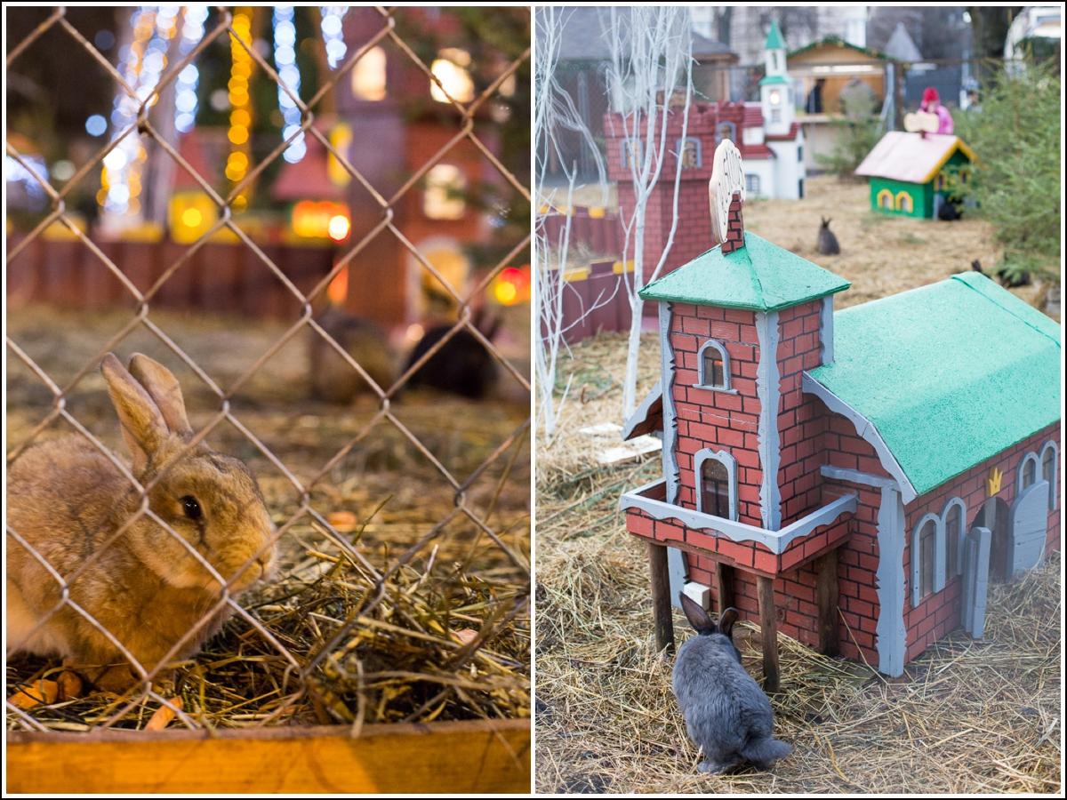 julemarked-kaniner-riga