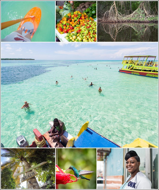 Trinidad-Tobago-reise-tilbakeblikk4