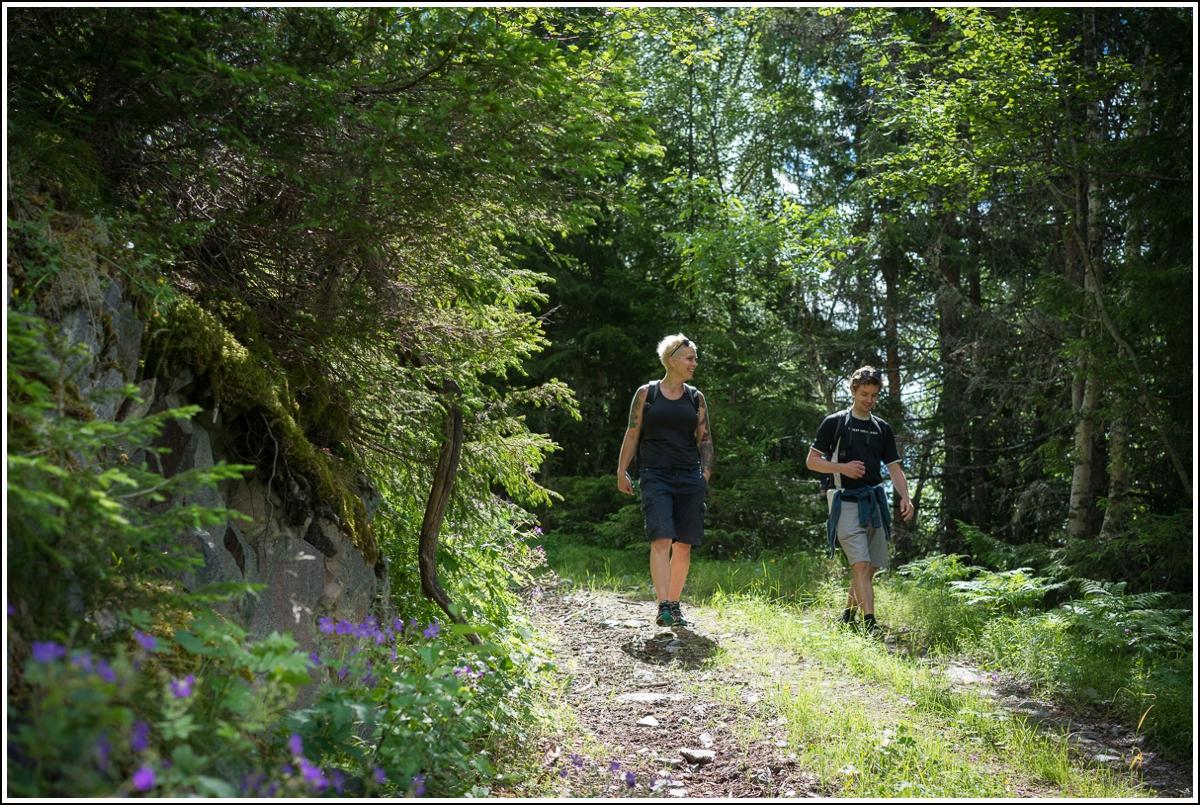 Vandretur i Dalen på Telemark