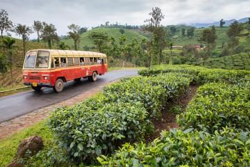 reisetips for februar er wayanad i india