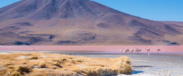ørkentur med bil i uyuni bolivia