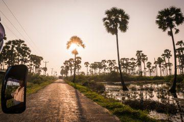 20-beste-reisetips-sri-lanka